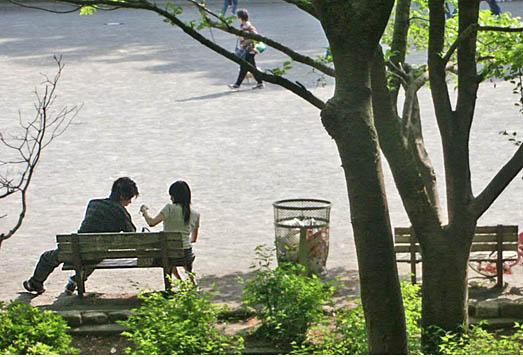日曜日の公園